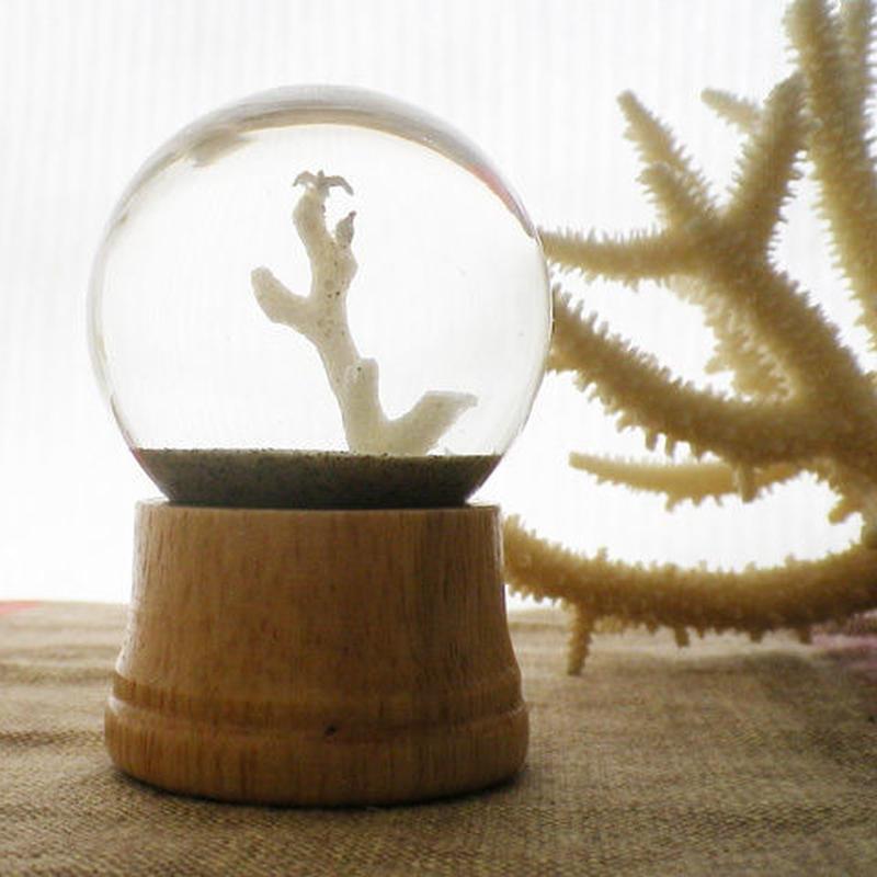 砂ドーム - coral tree -