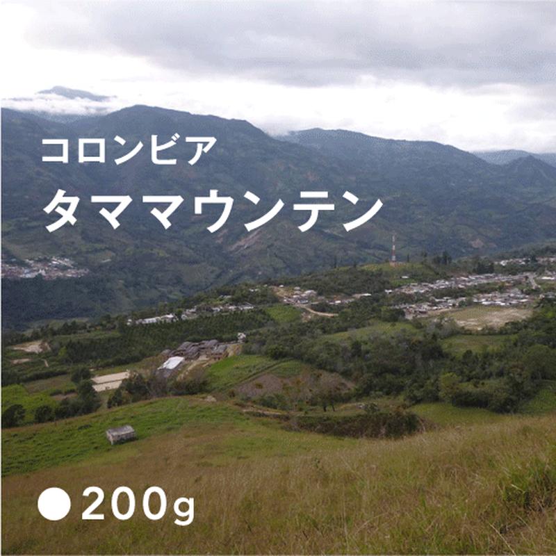コロンビア タママウンテン / 中深煎り (Full City Roast)