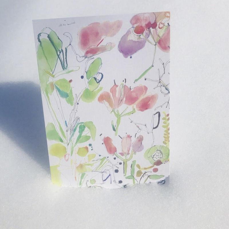 postcard / HAREMA おめでとう