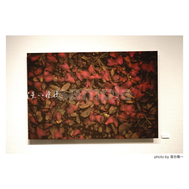 「質量への憧憬」展示作品:「花と枯葉」