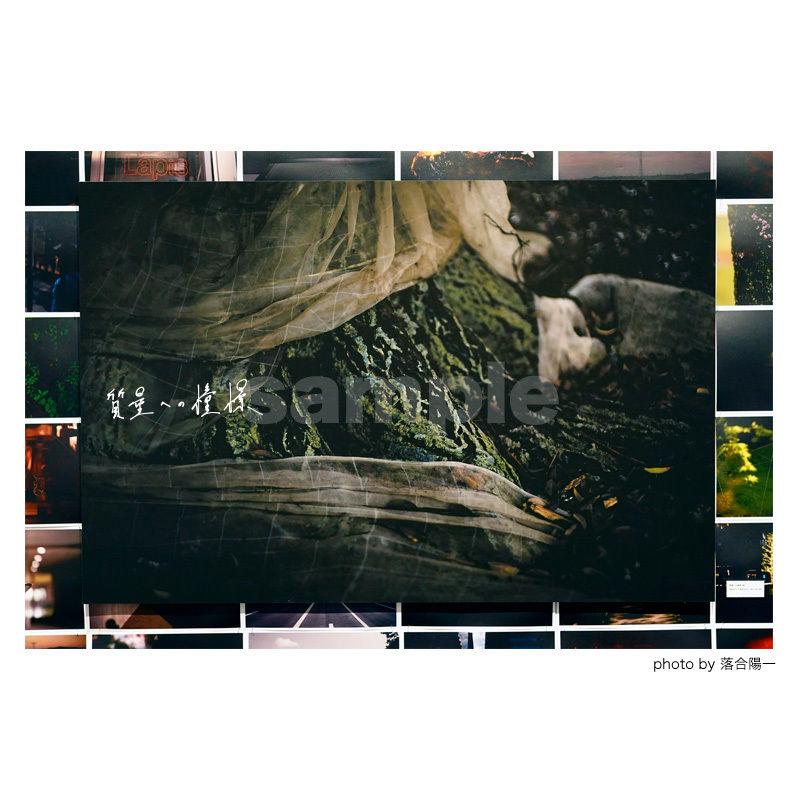 「質量への憧憬」展示作品:「根」