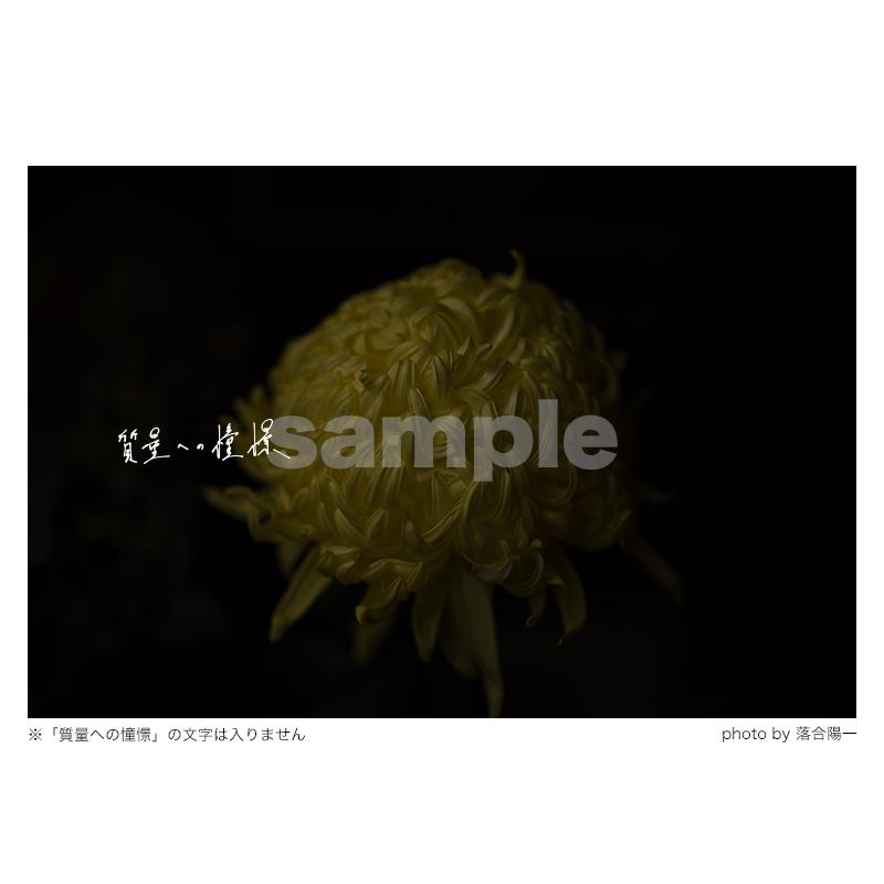 質量への憧憬:花(Sサイズ)