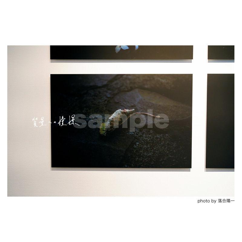 「質量への憧憬」展示作品:「葉」