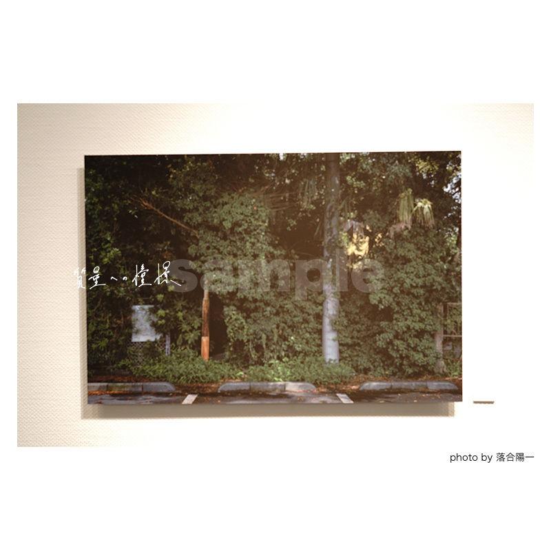 「質量への憧憬」展示作品:「自然化」