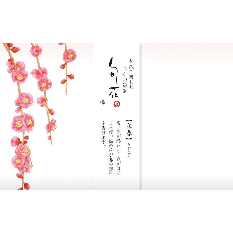 KK136旬花 懐紙 梅