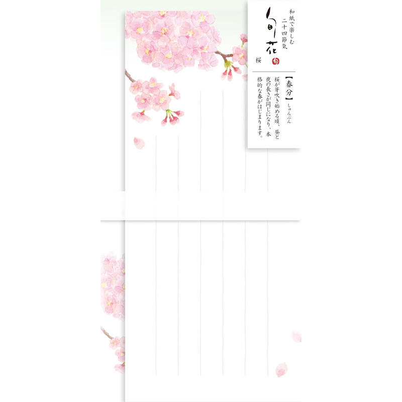 LI251旬花 一筆箋 桜