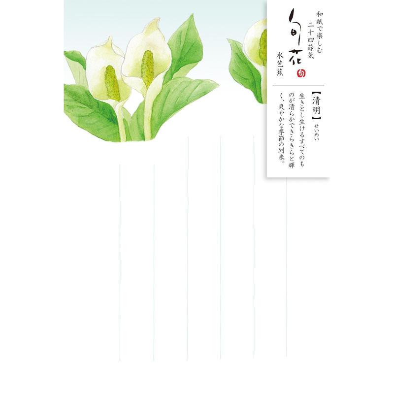 HK103旬花 はがき 水芭蕉