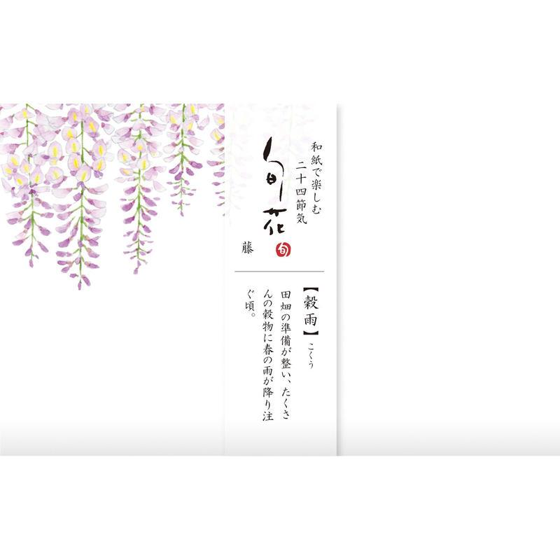 KK141旬花 懐紙 藤