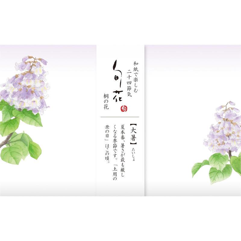 KK147旬花 懐紙 桐の花