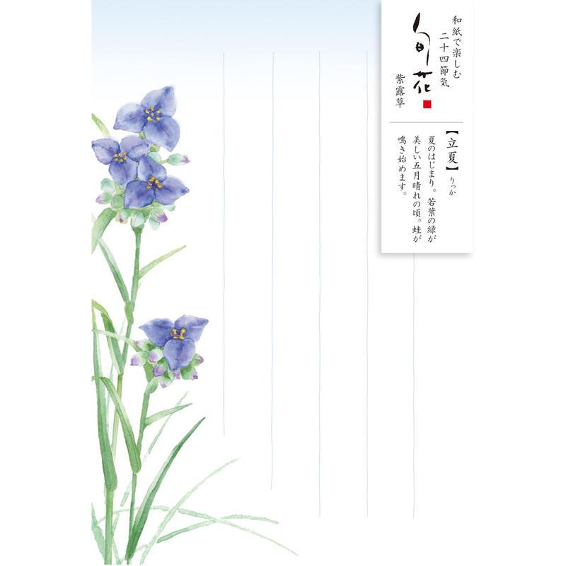 HK105旬花 はがき 紫露草