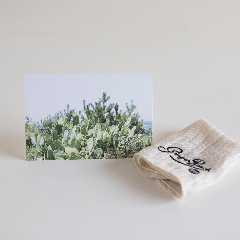 Gift Package : Travel Postcard with Hand Towel