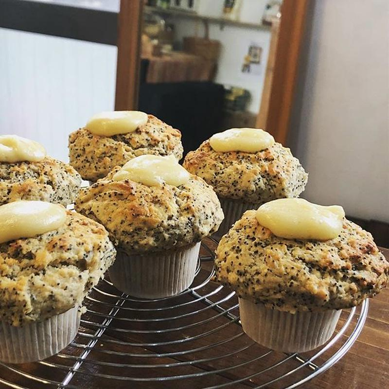 レモンポピーシード  Lemon poppy seed muffin vegan