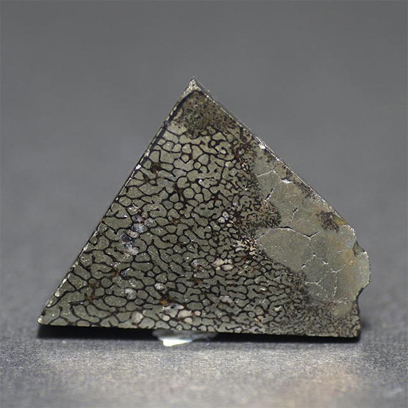 ダイナソーボーン パイライト化 研磨原石 035