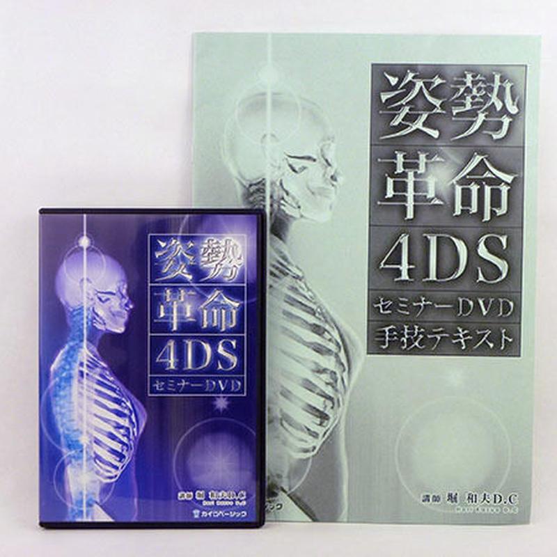 姿勢革命4DSセミナー DVD 堀和夫