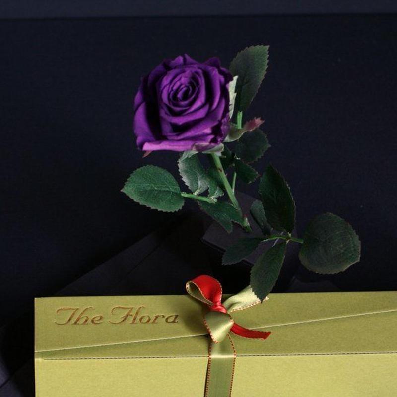 [プリザ]飛び出すバラ The Flora /ムラサキ