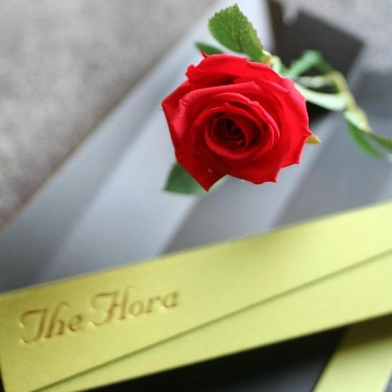[プリザ]飛び出すバラ The Flora /レッド