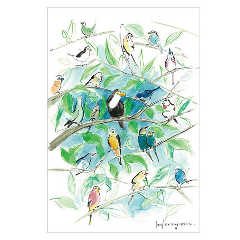 鳥さんポストカード