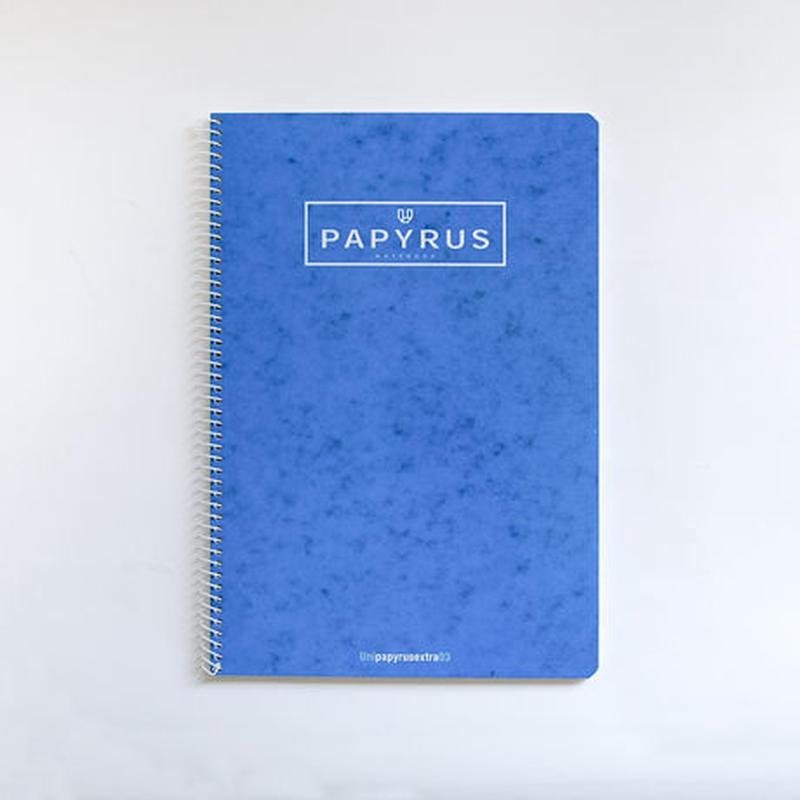 PAPYRUS A4ノートブック(ブルー)