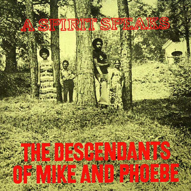 DESCENDANTS OF MIKE & PHOEBE / Spirit Speaks (LP/180g)