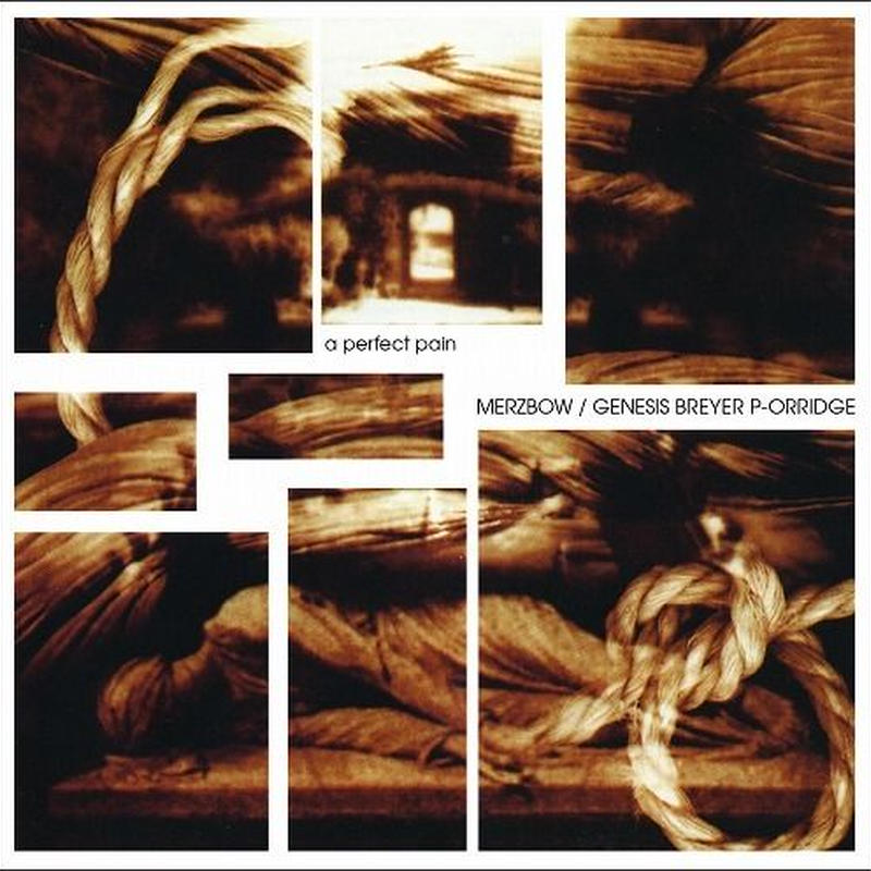 MERZBOW , GENESIS BREYER P-ORRIDGE / A PERFECT PAIN (LP) 180g
