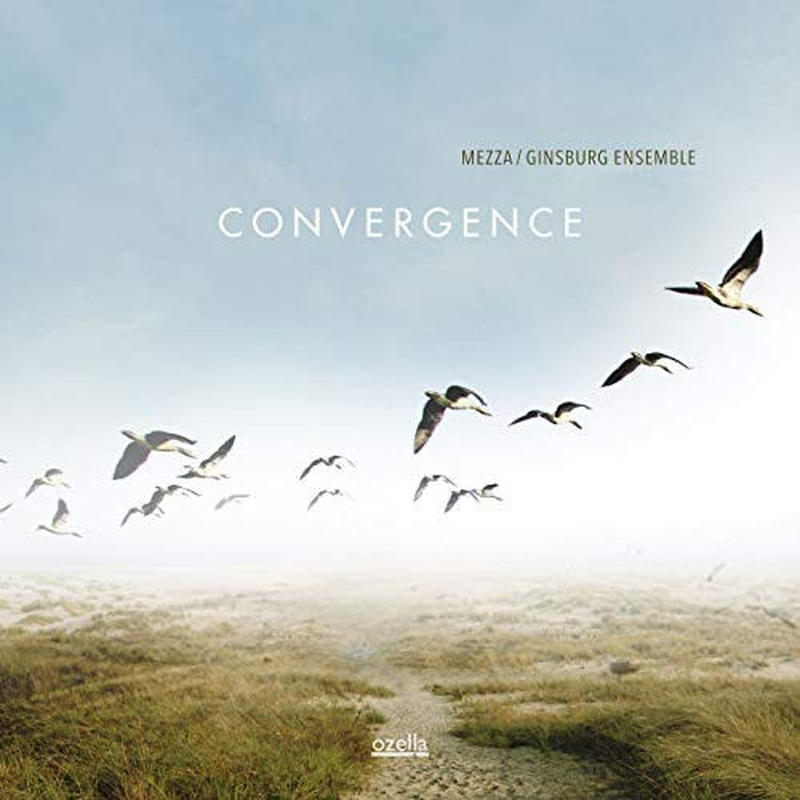 MEZZA/GINSBURG ENSEMBLE / Convergence (LP)