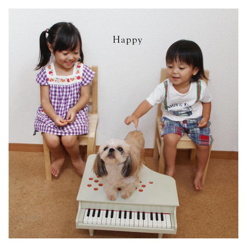 Happy / イズミカワソラ 他
