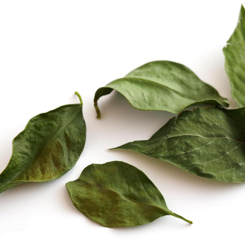THE TEA /JAPANESE HERB BREND / FULL MOON(1.4g / 2 servings)