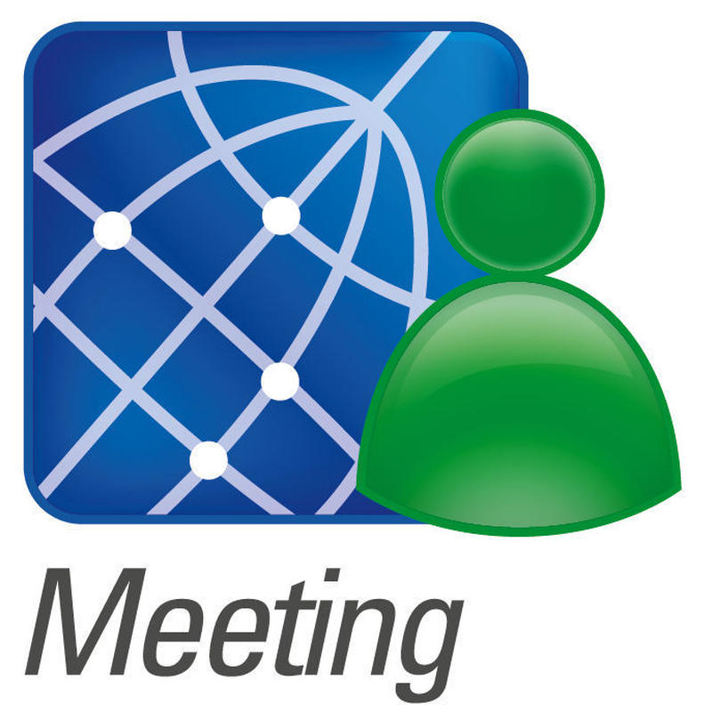 Meeting-20 (1 year)