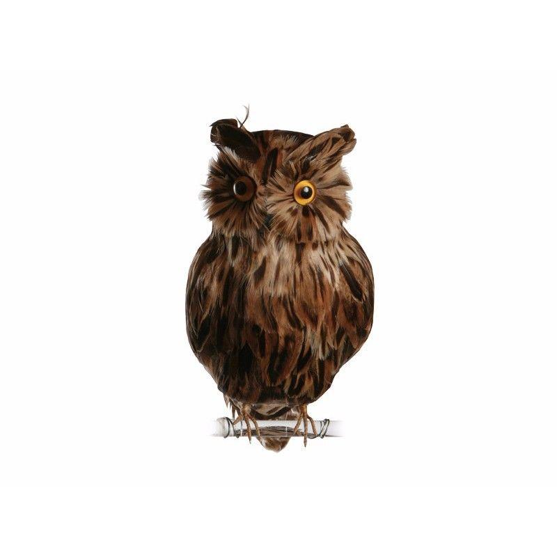 OWL BROWN〈L〉