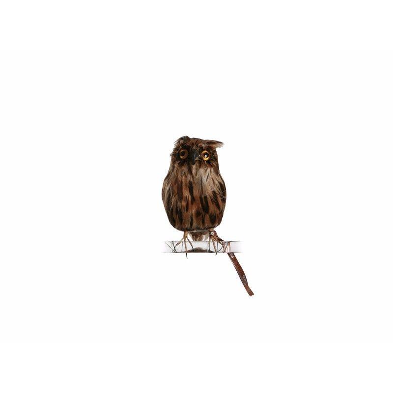 OWL BROWN〈S〉