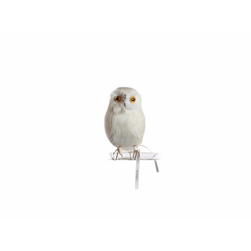 OWL WHITE〈S〉