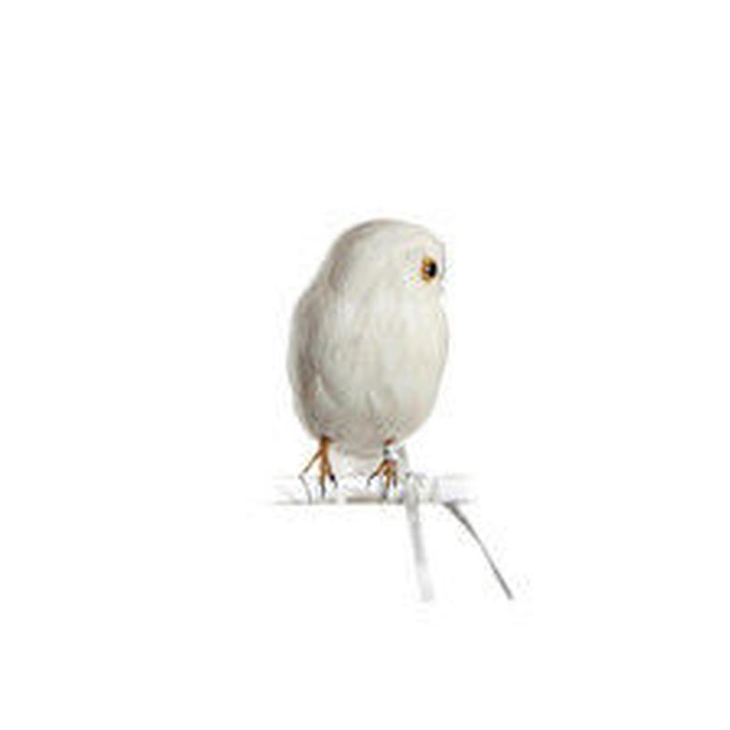 OWL WHITE SIDE〈S〉