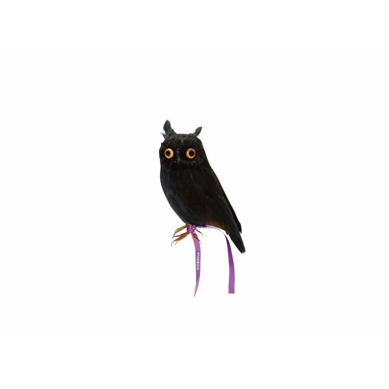 OWL BLACK〈S〉