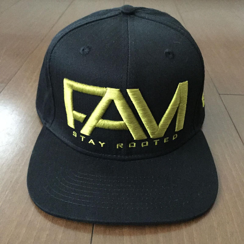 "FAM HAWAII ""LOGO"" Hat Black / Gold"