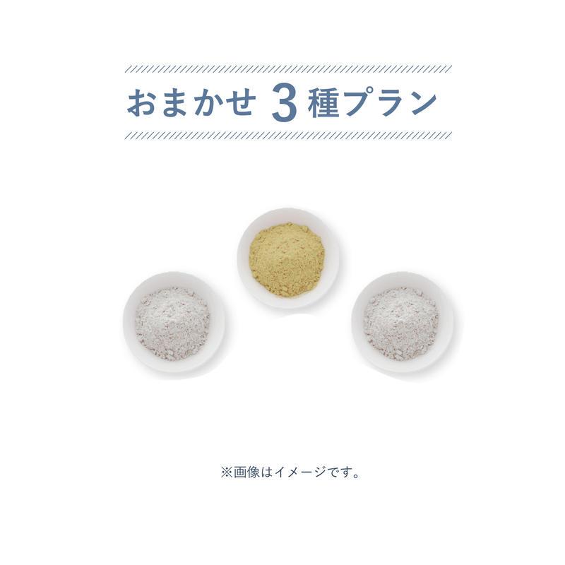 おまかせ3種