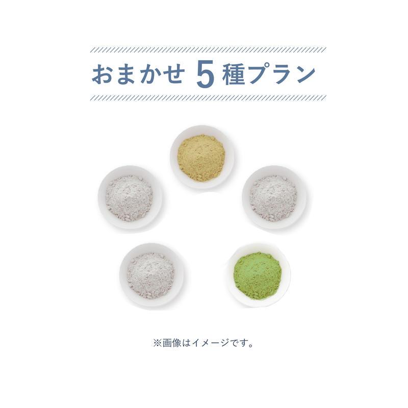 おまかせ5種