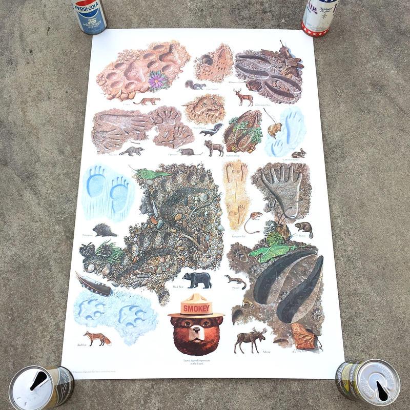SMOKEY BEAR Education Posterスモーキーベア エデュケーションポスター/181126-3