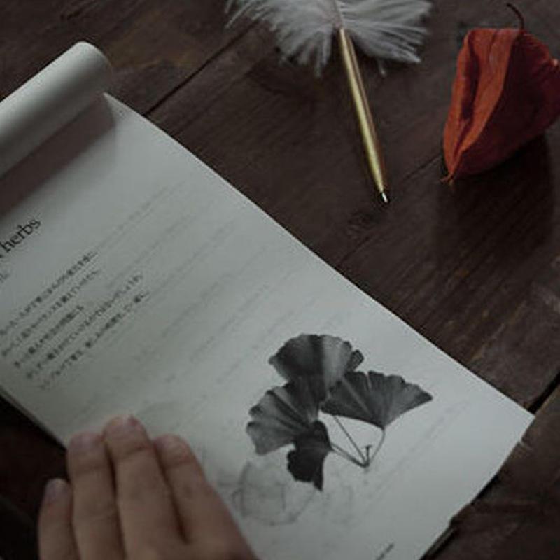 【特別企画!】インドネシアの伝承療法『ジャムゥ』PDFレポート!