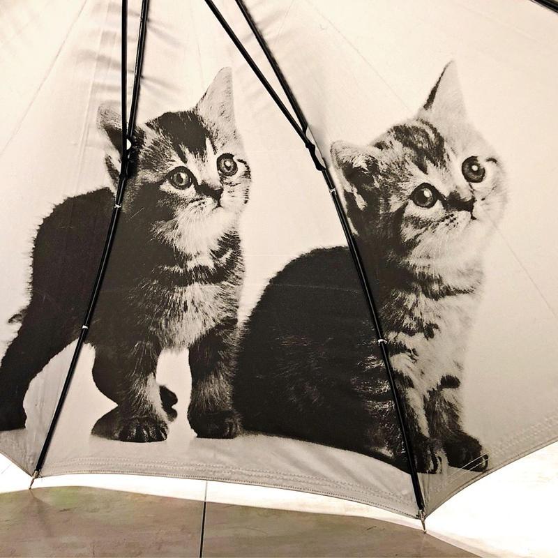 【日傘 猫ちゃんシリーズ】傘専門店 通販 東京 遮光遮熱 晴雨兼用 ワンタッチ UV レディース メンズ 旅傘【Black スコティッシュフォールド】