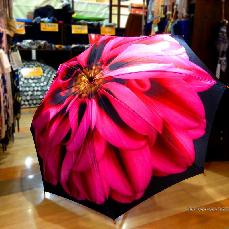 入手難易度上位 傘専門店 通販 東京 レディース 雨傘 サビにくい 超軽量 旅傘【Artシリーズ ダリア】