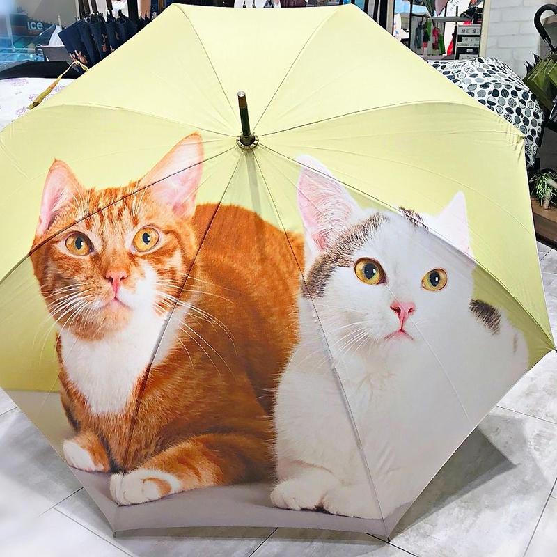 【転写 猫ちゃんシリーズ】60cm 傘専門店 通販 東京 折り畳み 旅傘【Collar Cat E】