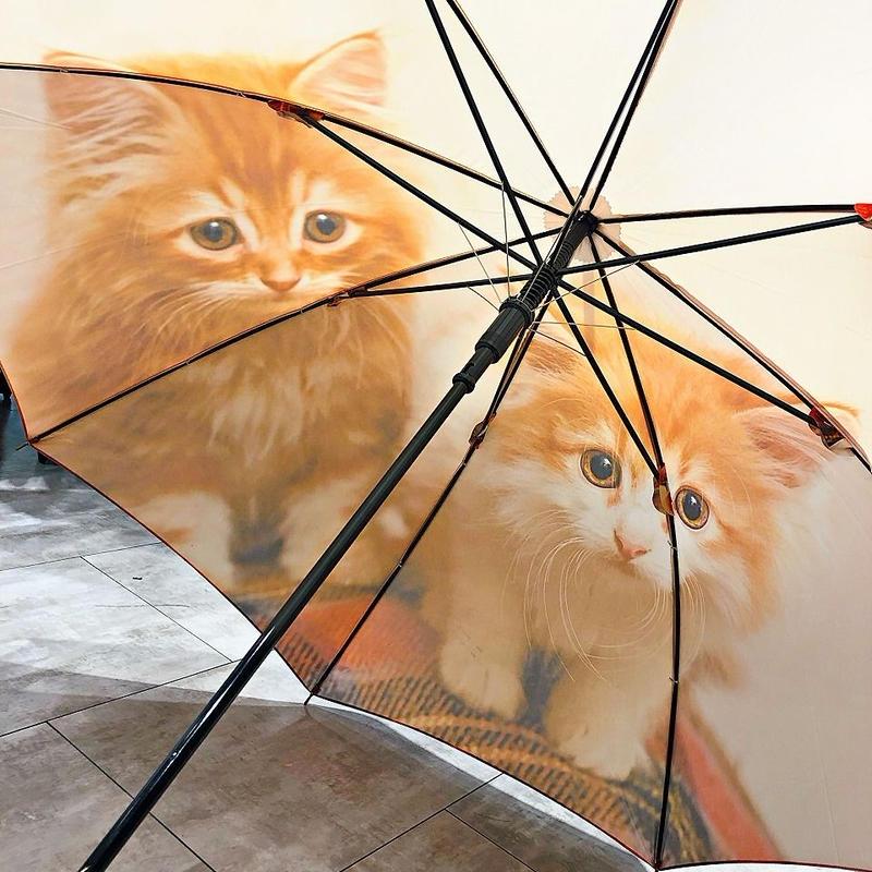 【転写 猫ちゃんシリーズ】60cm 傘専門店 通販 東京 折り畳み 旅傘【Collar Cat C】
