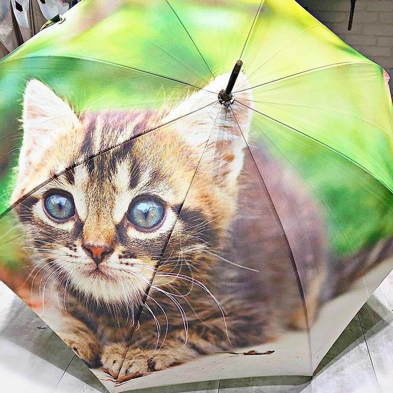 【転写 猫ちゃんシリーズ】60cm 傘専門店 通販 東京 折り畳み 旅傘【Collar Cat F】