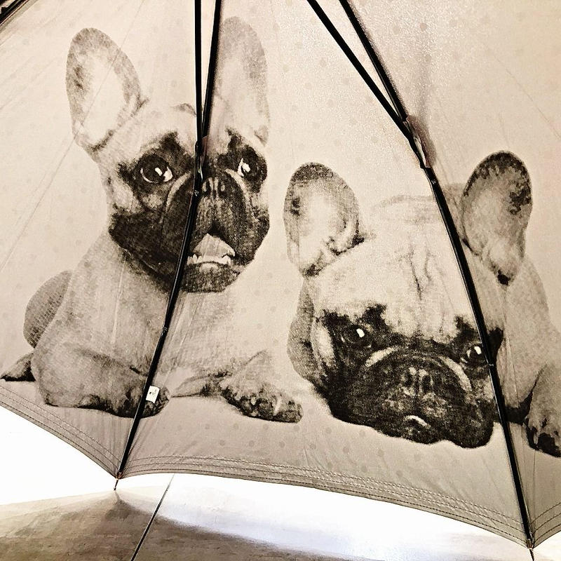 【日傘 わんちゃんシリーズ】傘専門店 通販 東京 遮光遮熱 晴雨兼用 ワンタッチ UV レディース メンズ 旅傘【Pink フレンチブルドッグ】