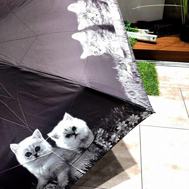 【折 猫ちゃんシリーズ】55cm 傘専門店 通販 東京 折り畳み 旅傘【癒し Cat A】