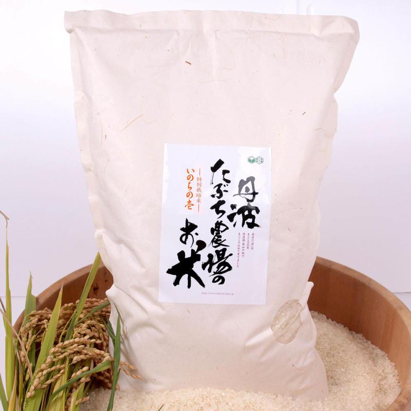丹波篠山の幻のお米 5㎏