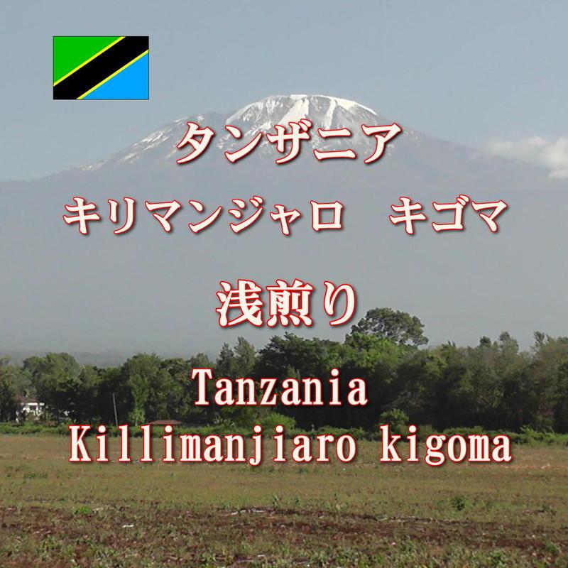 タンザニア キリマンジャロ 浅煎り 250g