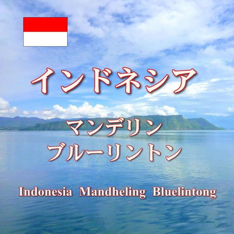 <<コーヒー豆 通販>>インドネシア マンデリン ブルーリントン 深煎り 100g
