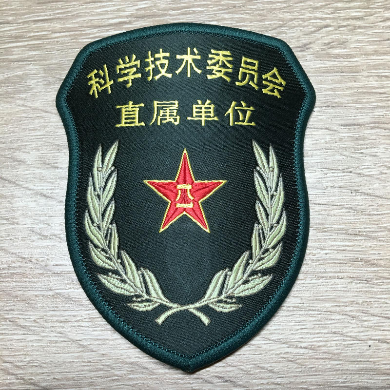 【科学技術委員会 直属単位】中国人民解放軍 15式 中央軍委部隊章