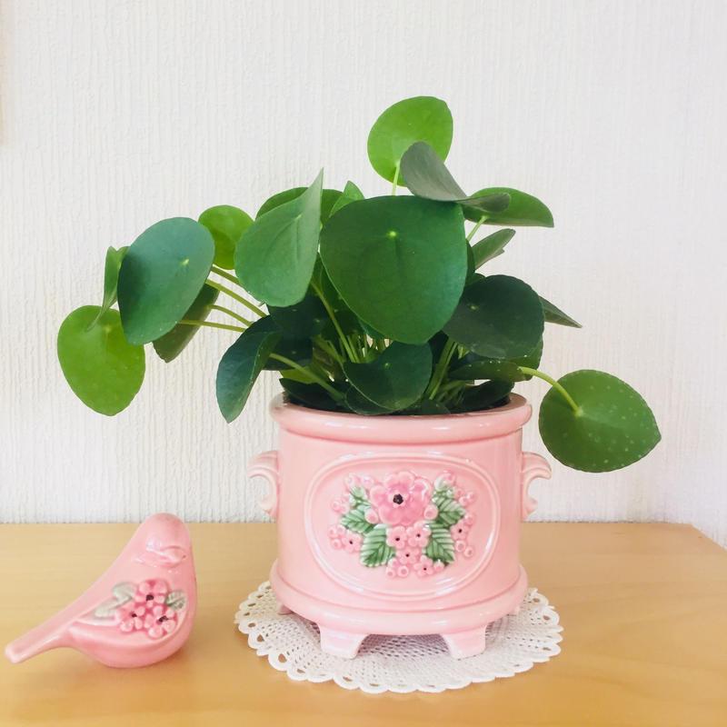 DECO/デコ/Rosa Ljung/ローサ.ユング/フラワースタンドと小鳥のセット/ピンクの小花